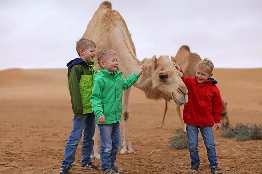 Kids with a camel in Dubai desert