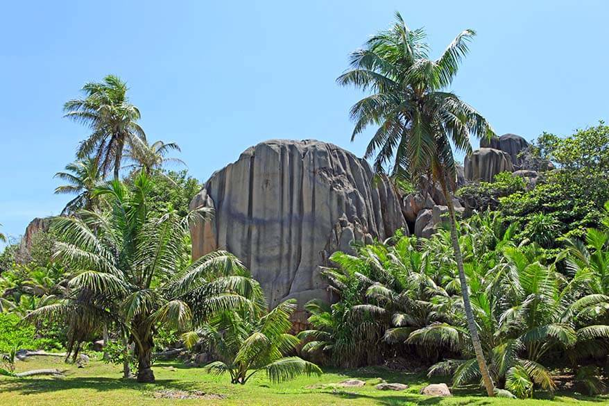 Giant granite boulders and palm trees on Big Sister Islands Seychelles