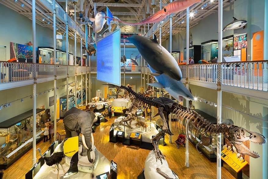 National Museum of Scotland - one of the best things to do in Edinburgh