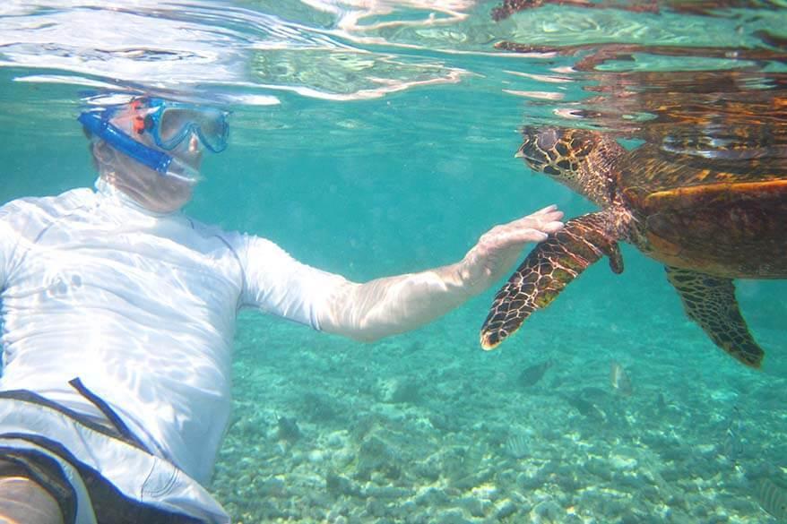 Snorkeling with sea turtles in Seychelles
