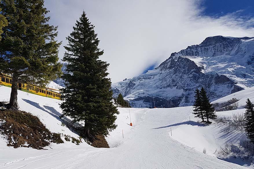 Wengen valley run ski piste 36