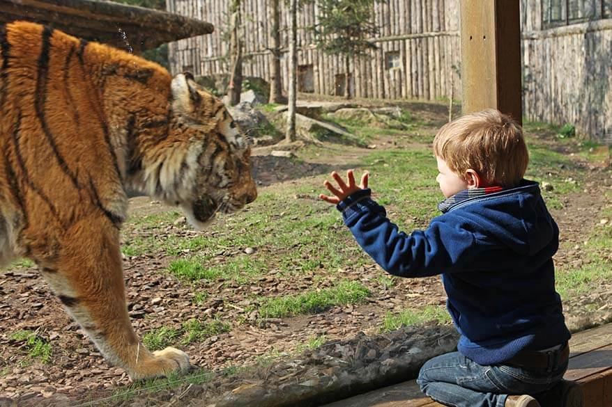 Amneville Zoo is one of the best day trips near Luxembourg with kids