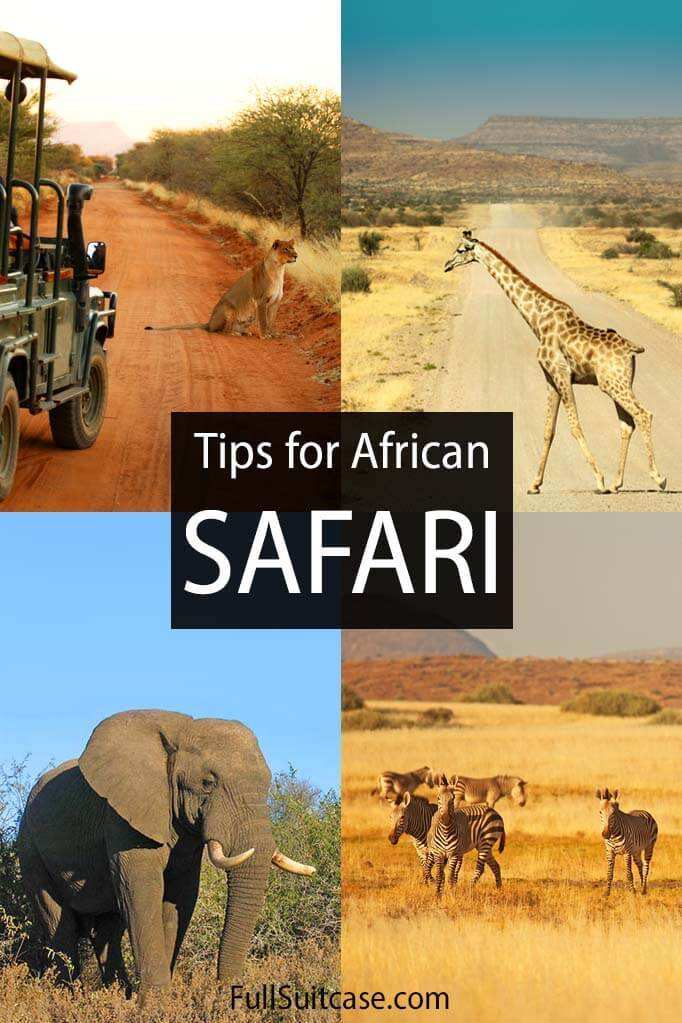 Tips for African safari trips