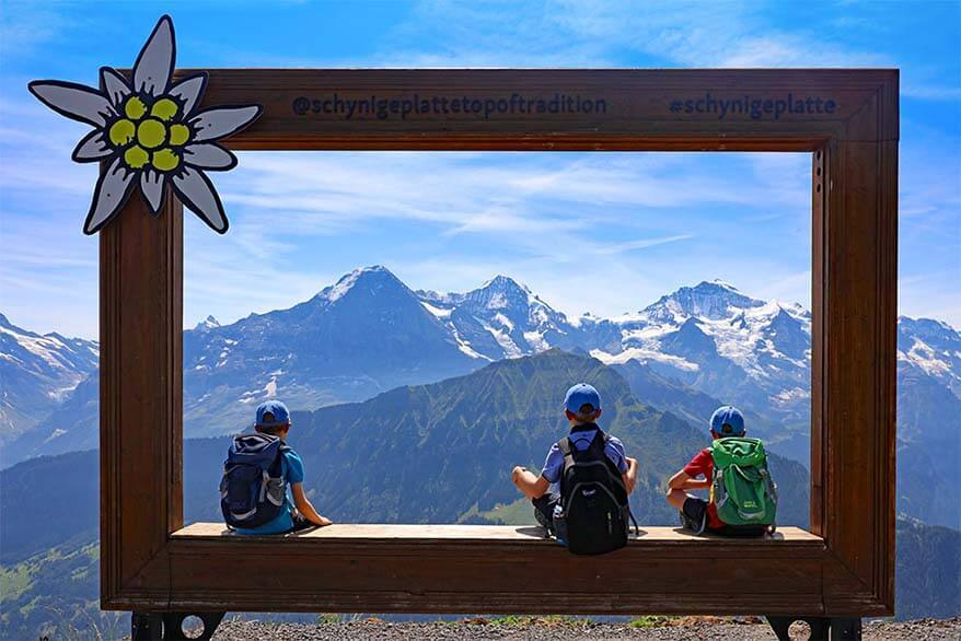Travel picture of kids enjoying the view at Schynige Platte in Switzerland