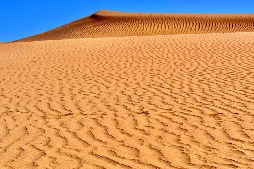 Maspalomas Sand Dunes in Gran Canaria Spain
