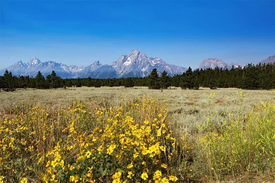 Jackson Hole scenery Wyoming