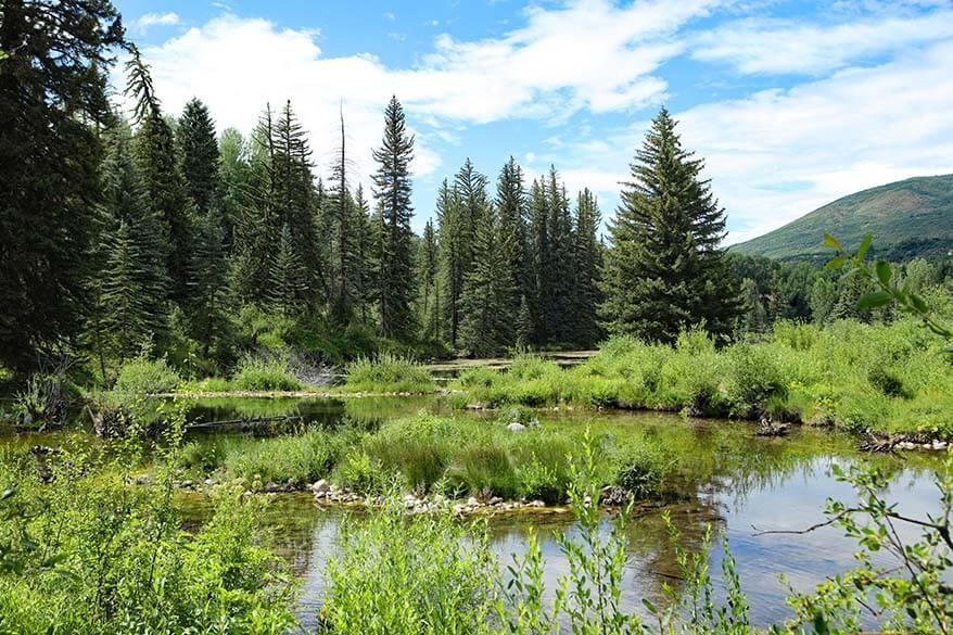 Scenery at Aspen Center for Environmental Studies