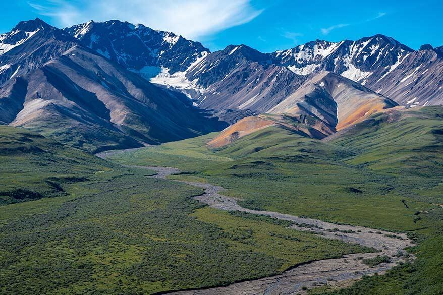 Denali National Park in summer