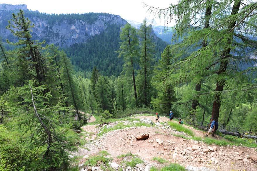 Hiking trail 434 between Lago Federa and Ponte de Ru Curto in the Italian Dolomites