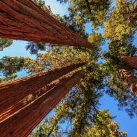 US National Parks to visit in June