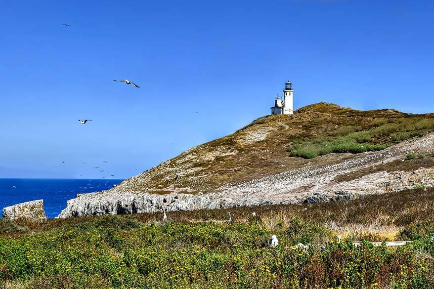 Where to go in June - Channel Islands National Park