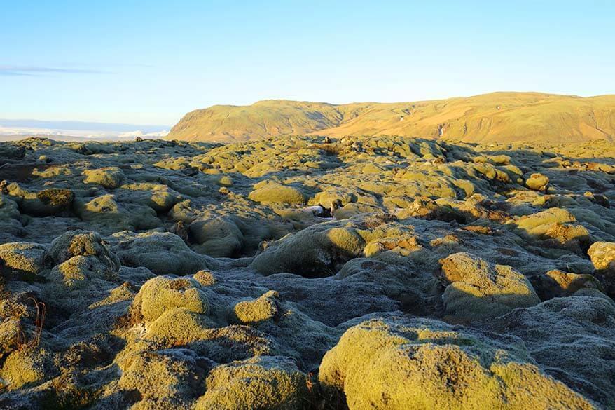 Eldhraun lava field in Iceland
