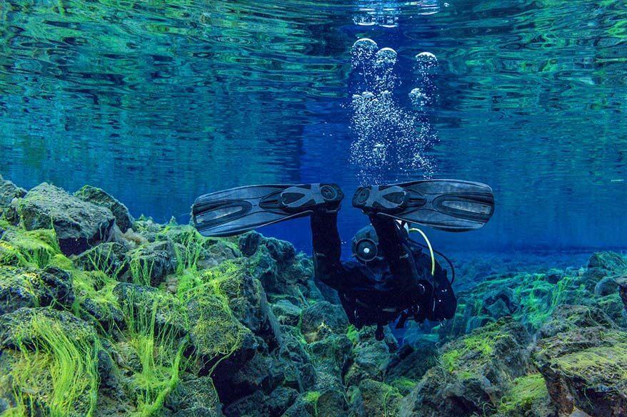 Silfra snorkeling in Thingvellir National Park in Iceland