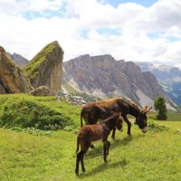 Best places to visit in Dolomites Italy