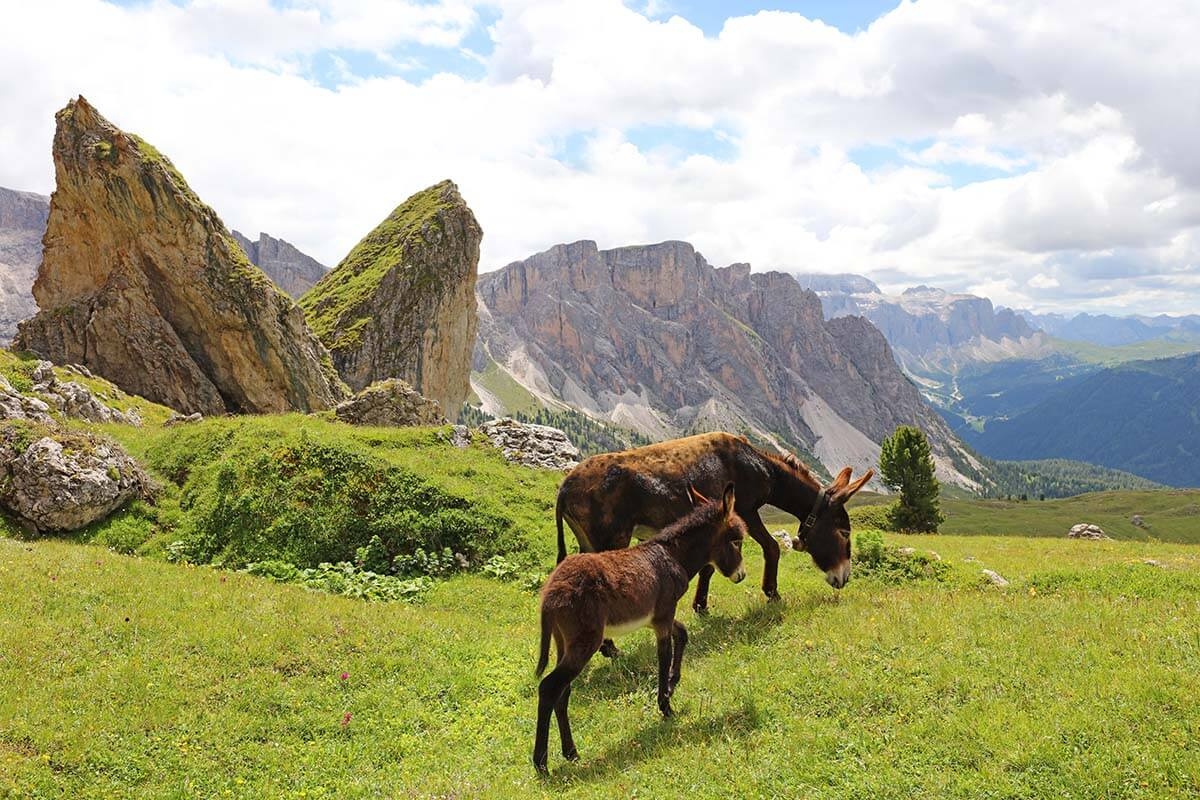 16 Best Places to Visit in the Dolomites, Italy (+ Map, Photos & Info)