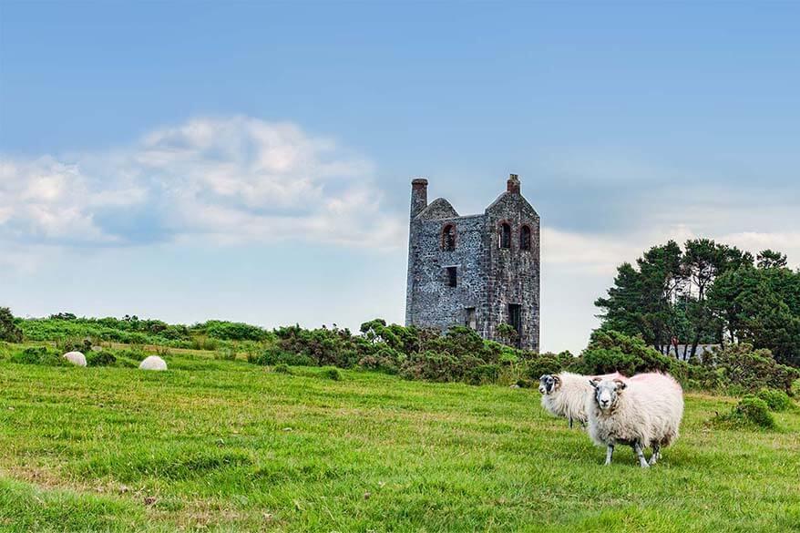 Bodmin Moor countryside in Cornwall UK