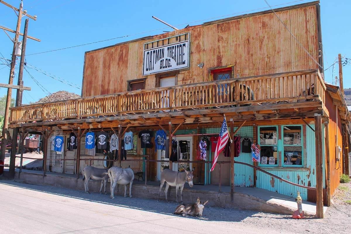 Wild burros in Oatman Arizona