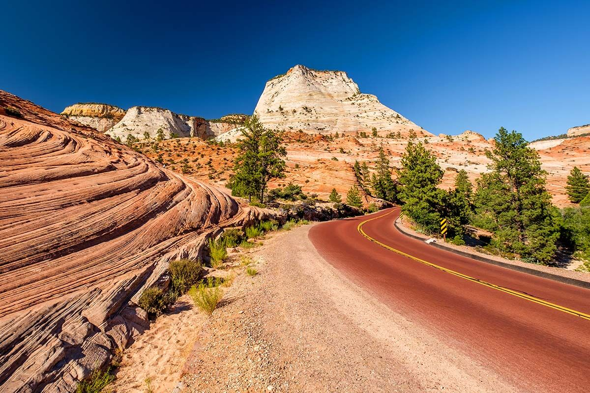 Scenic road through Zion National Park