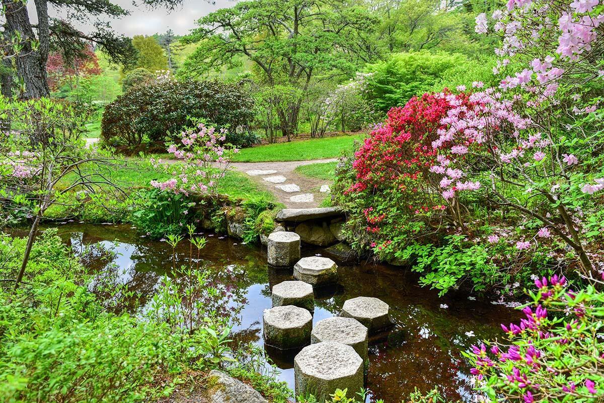 Asticou Azalea Gardens in Acadia National Park