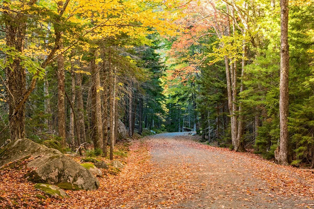 Carriage Roads in Acadia National Park in autumn