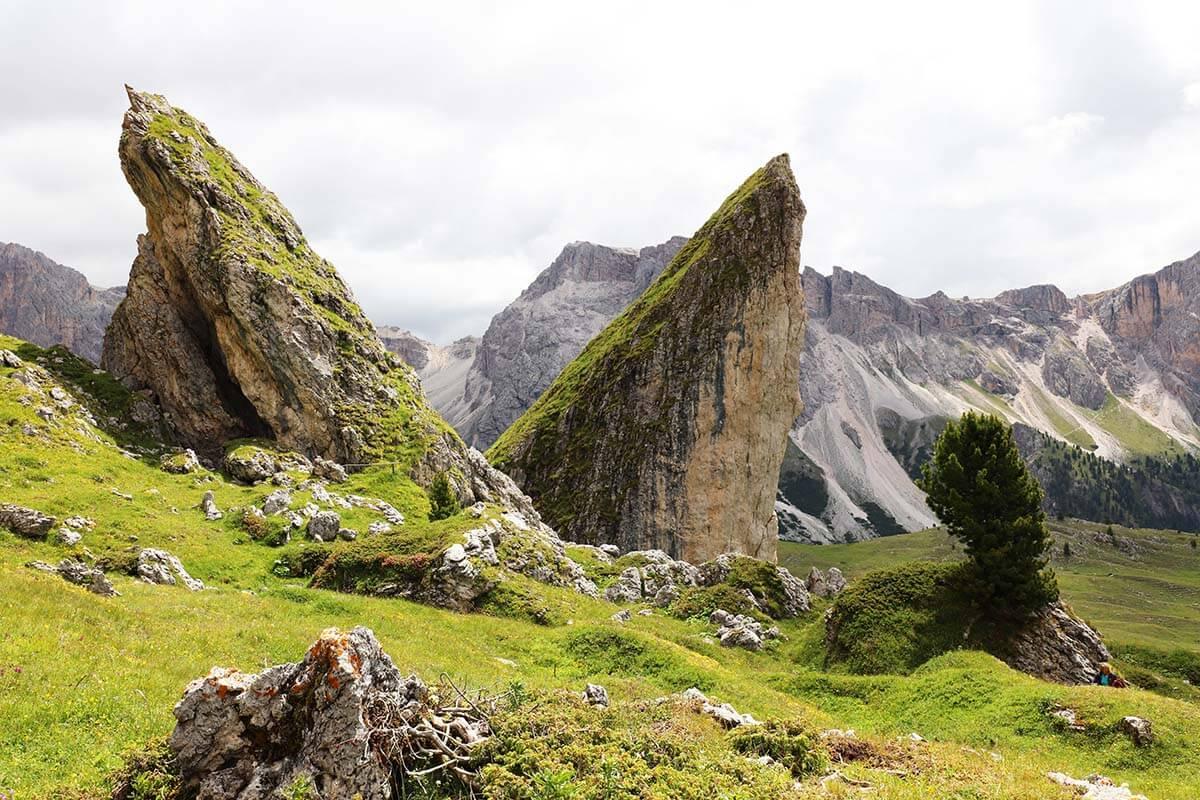 Pieralongia in Val Gardena Dolomites Italy