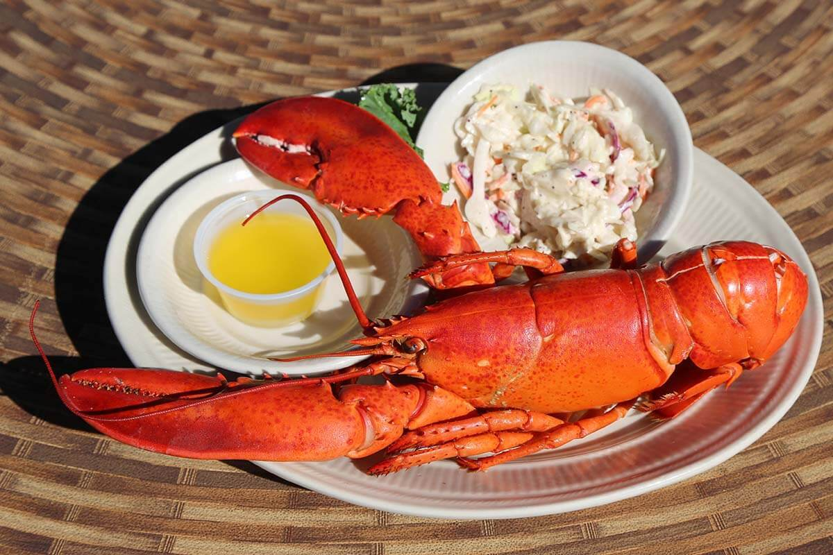 Where to eat in Acadia National Park