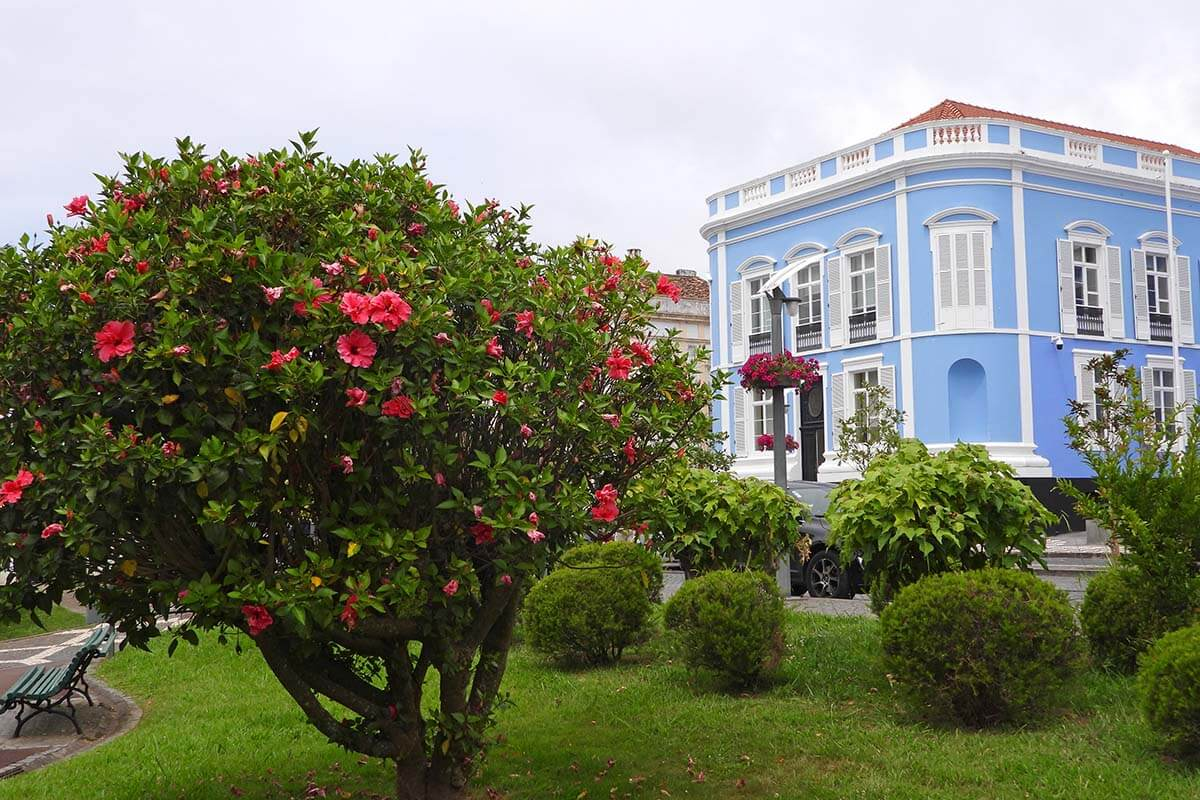 Colorful buildings and gardens in Ponta Delgada town in the Azores