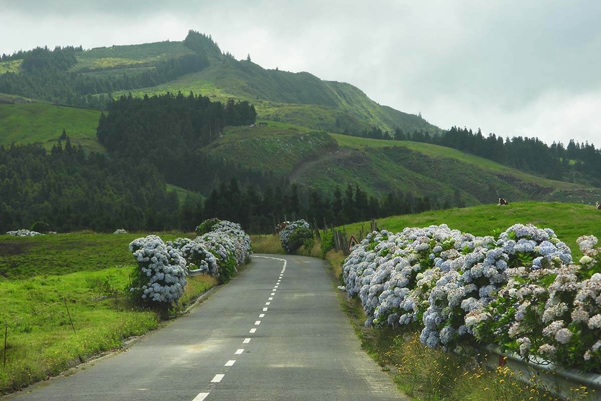 Driving on a road near Furnas Azores