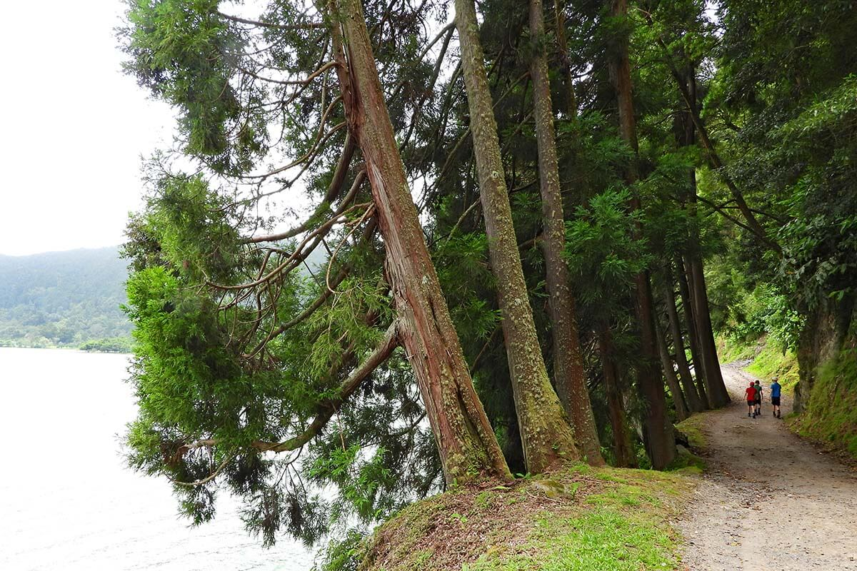Hiking around Furnas Lake in the Azores