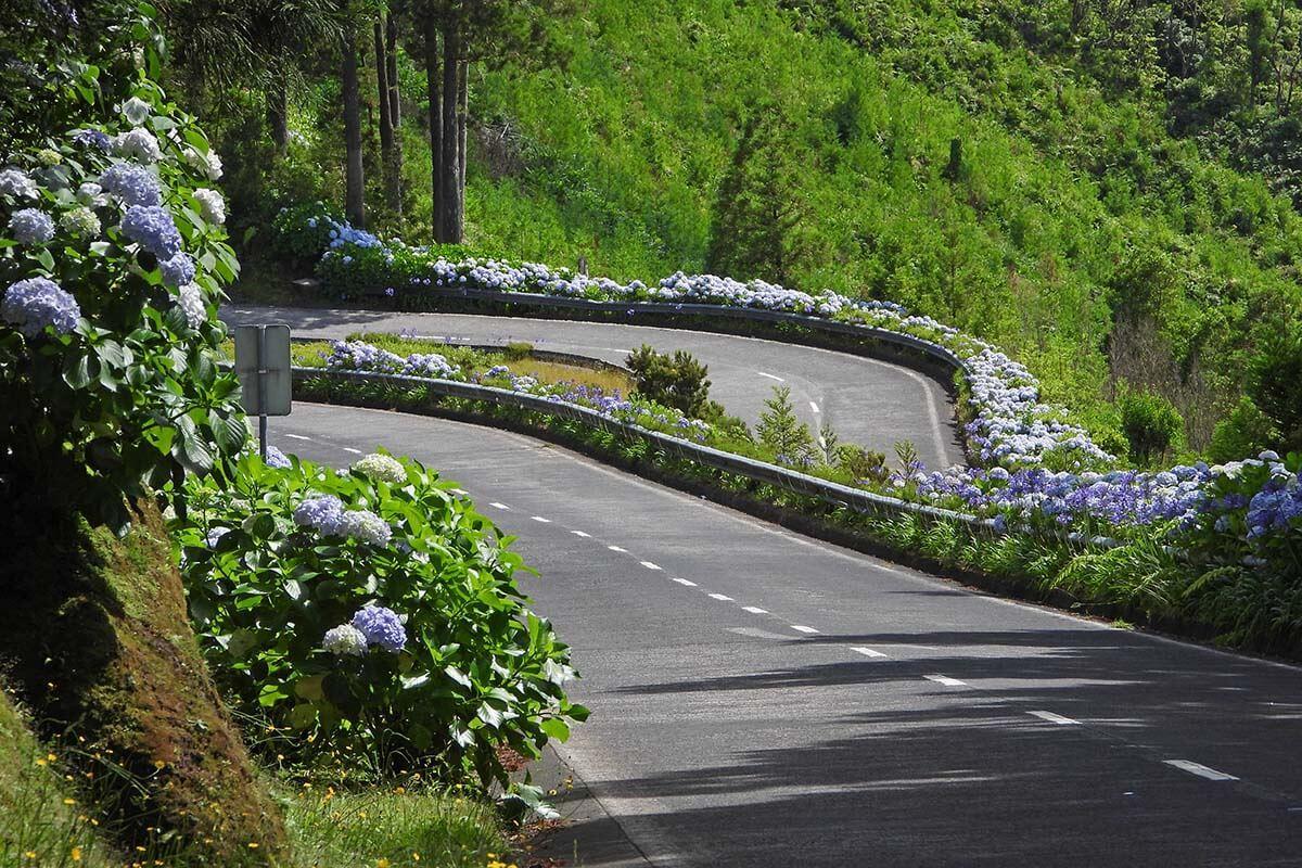 Scenic Road in Sete Cidades, Azores