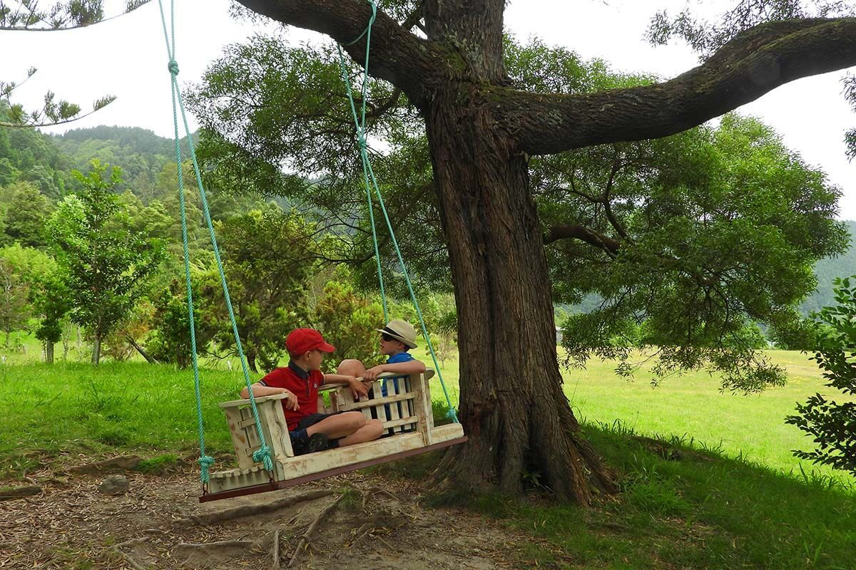 Swings at the Monitoring and Research Center of Furnas