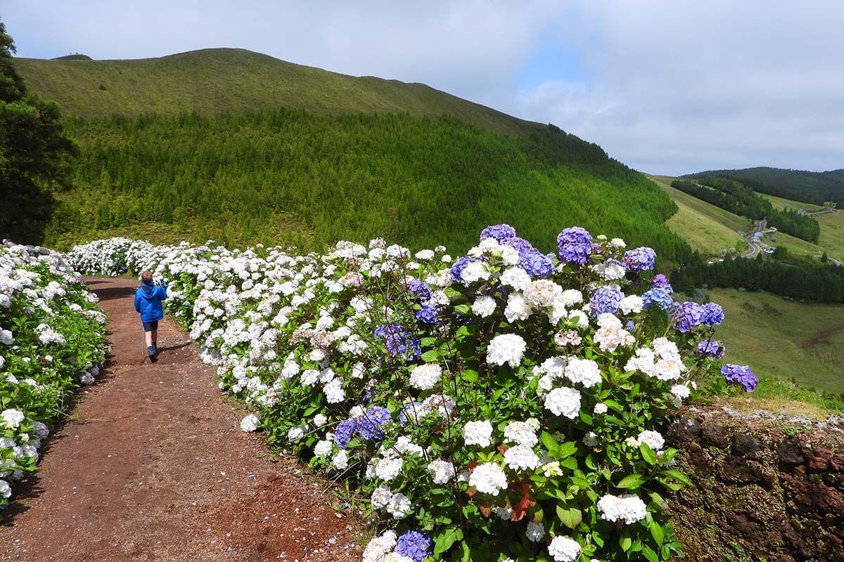 Things to do in Sete Cidades Azores - Serra Devassa hike